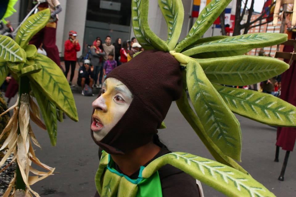 portrait plante