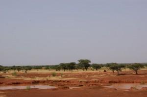 Luci ed ombre sulla carestia nel Sahel