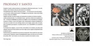 PROFANO Y SANTO: extensiones visuales de la artista chilena Ana Videla Lira