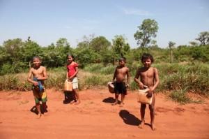 Polícia ambiental e MPF vão investigar contaminação de córrego em comunidade Kaiowá do MS