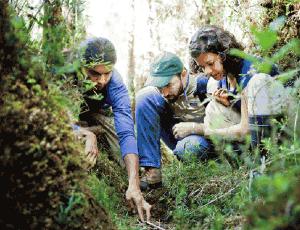 Campaña Reforestemos Patagonia ha reunido más de 150 mil árboles