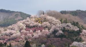 Fukushima radioactive waste dumping scandal in Japan