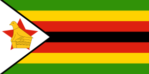 Zimbabwe must stop clampdown and protect fundamental rights during referendum