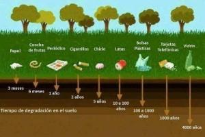 Separar la basura por una Tierra más sostenible