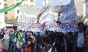 Retrato de una manifestación no-violenta.