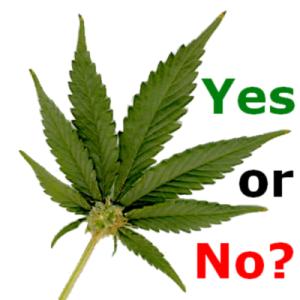 Despenalizar la marihuana