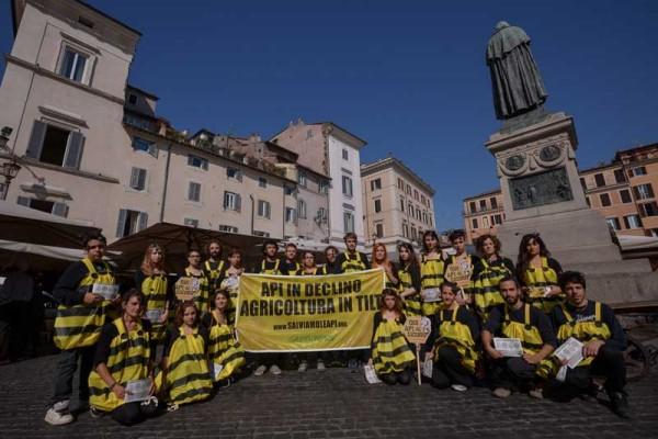 Le api di Greenpeace in giro per l'Italia