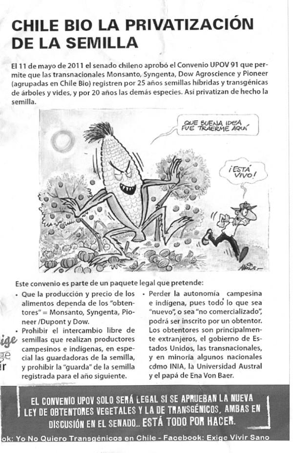 folleto semillas