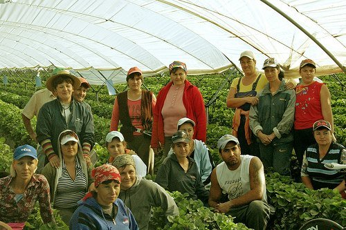 Raw deal for migrant labour. A personal experience