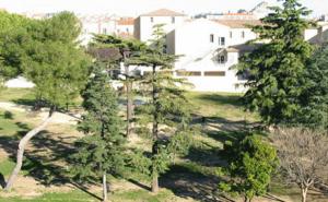 Sauvetage d'un parc en ville !