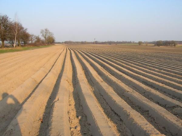 Une agriculture sans paysans