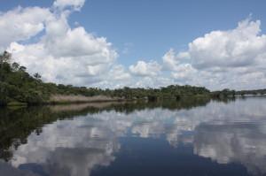 Ecuador: los derechos de la naturaleza después de la caída de la moratoria petrolera en la Amazonia