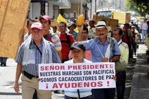 Soulèvement des agriculteurs colombiens : les semences sous les feux de l'actualité