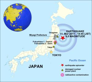 Cidade japonesa de Sendai queima restos do desastre de 2011