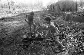 Trabalho infantil emprega 168 milhões, apesar de queda