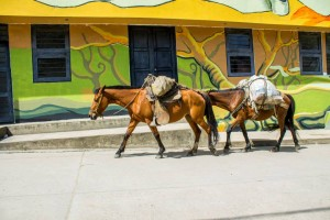 Toribío: Primera Minga de Los Muralistas de los Pueblos