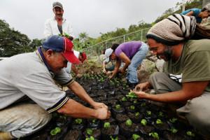 Nouvelles chroniques communardes du Venezuela