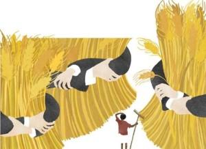 Petits paysans africains contre OGM