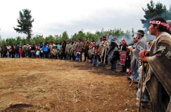 Chili. Résistance et lutte territoriale au pays Mapuche
