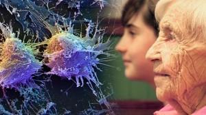 Científicos podrían curar el envejecimiento en el futuro