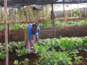 Ola de repatriados desborda a Etiopía