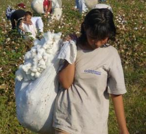 Daewoo Corp.: Stop Supporting Slavery in Uzbekistan!