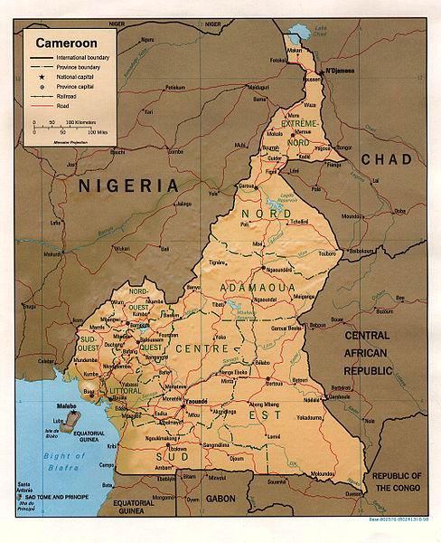 Peurs et craintes aux frontières du Cameroun