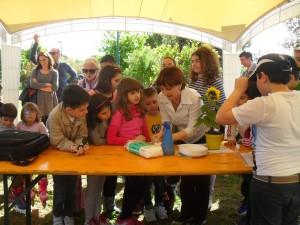 Semi della pace in Val Susa e a Brindisi