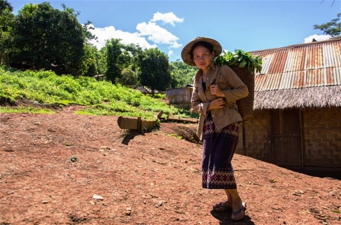 """Laos """"Land Grabs"""" Drive Subsistence Farmers into Deeper Poverty"""
