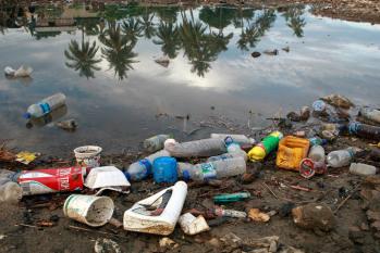 I rifiuti plastici e i danni all'ecosistema marino