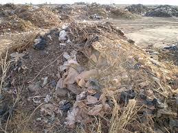 Chasse aux plastiques non biodégradables au Cameroun