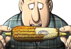 Monsanto, a semente do diabo