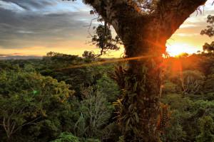 Das Chevron-Texaco Desaster im Amazonas soll sich nicht wiederholen
