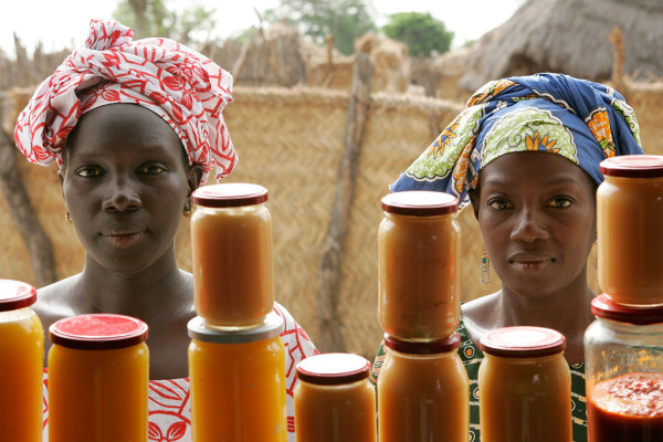 Role of Rural Women, Key for Required Economic, Environmental and Social Changes