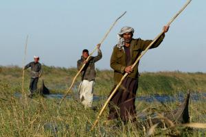 Agricoltori e pastori in Iraq hanno bisogno di aiuto urgente