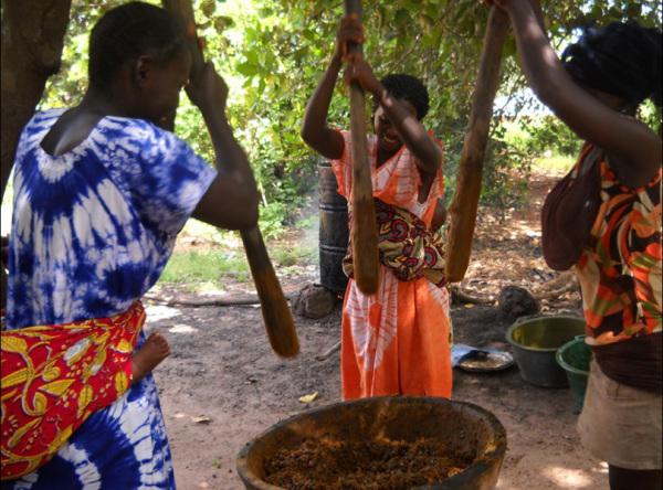 Tredici paesi ricevono un riconoscimento per aver conseguito progressi eccezionali nella lotta contro la fame