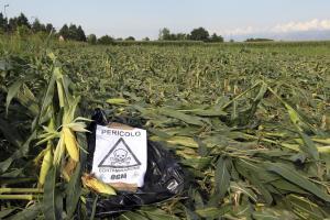 La società civile e i produttori biologici e agroecologici bocciano il parere della Commissione Ue favorevole a una diversa normativa del settore