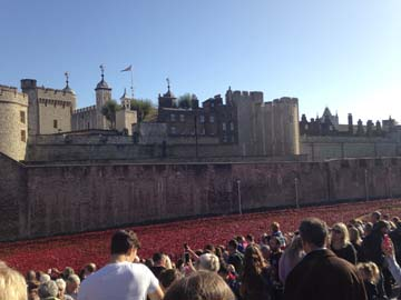 Poppies – wishing that WWI violence is never repeated again