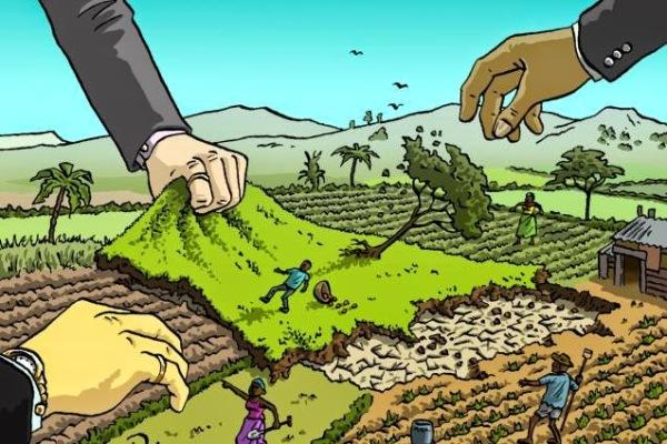 Expo: nutrire il pianeta o nutrire le multinazionali ?