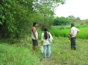 Land related social and human rights issues