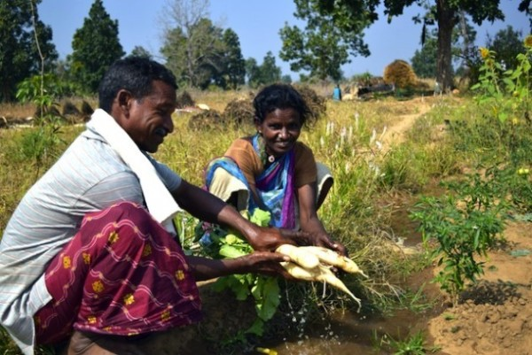 Agricultura sostenible al rescate de indígenas en India