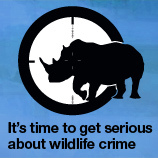 Weapon of the Global Elite » Wildlife, Forest Crime One of Largest Organized Criminal Activities, alongside Trafficking of Drugs, Arms, Humans