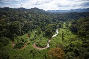 """En Honduras descubren mítica urbe precolombina """"Ciudad Blanca"""""""