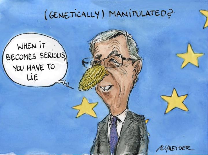 Greenpeace: Juncker ci ripensa e si rimangia le promesse sugli OGM