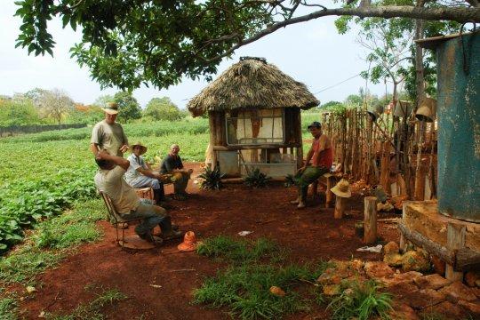 Cómo los cubanos han desarrollado la agricultura ecológica en su isla