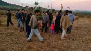 Familias mapuche reciben predios de más de 200 hectáreas en el Bío bío