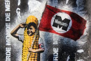 Un muro contra Monsanto