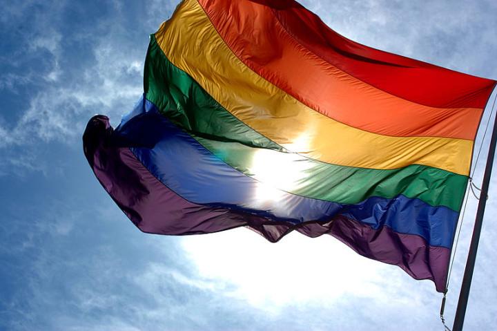 Somos diversidade, pare a homofobia e transfobia