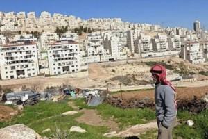 Situación y estadísticas: Palestina 2015