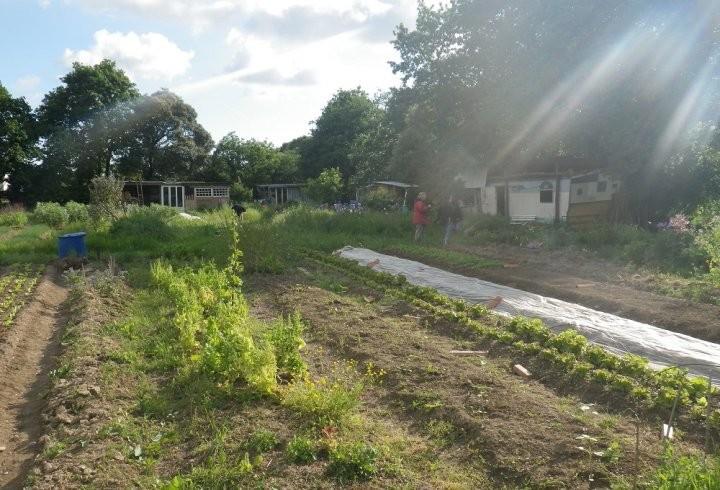 Chômeurs et paysans, à Couëron, ils mettent la terre en commun